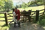 What happend in this hors-riding-school 2