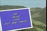 Teil 2 - Im Wald und auf der Heidi