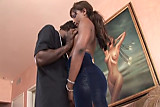 Ebony Star Cinnabunz in Black Big Boob Bangeroo 13