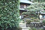 Geisha Paradise