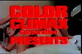 CC - Rodox Video
