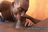 No Sound: Two ebony studs having some hot sex session