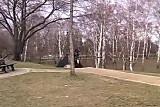 dans le parc public