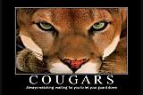 Cougarz Season 2 Premiere