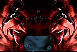MyVidsRocK4LiFe's FoxyJacky's Jacky Blue