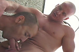 Raw roof top sluts - Scene 04