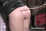 Extreme caning in the shed