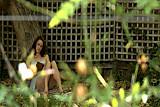 Outdoor series-Backyard Peek