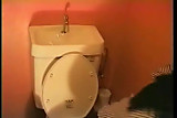 Japanese Toilet Masturbation - Pt. 3 - Cireman